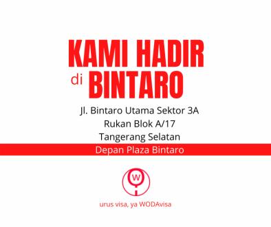 Biro Jasa Visa Bintaro